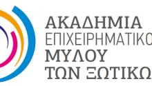 Ακαδημία Επιχειρηματικότητας Μύλου των Ξωτικών